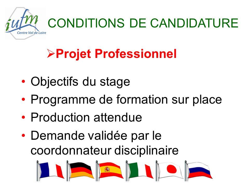 CONDITIONS DE CANDIDATURE Projet Professionnel Objectifs du stage Programme de formation sur place Production attendue Demande validée par le coordonn