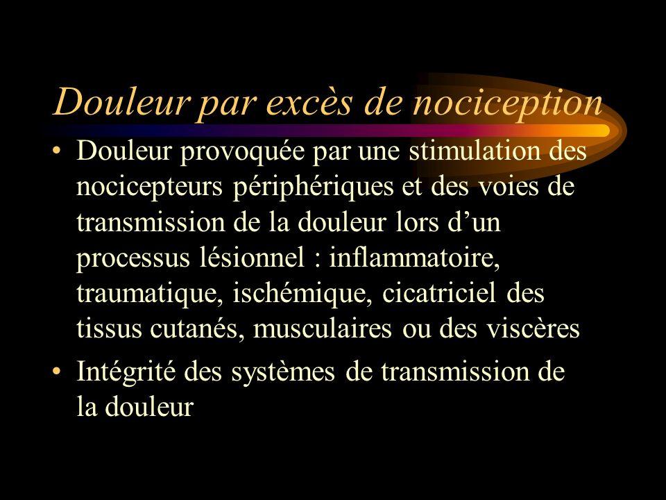 Douleur par excès de nociception Douleur provoquée par une stimulation des nocicepteurs périphériques et des voies de transmission de la douleur lors
