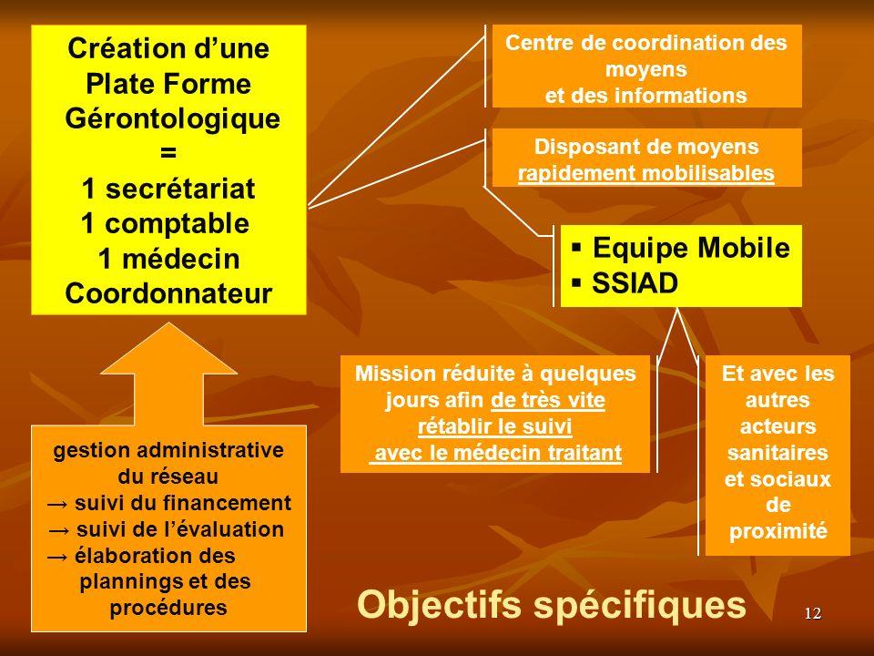 12 Création dune Plate Forme Gérontologique = 1 secrétariat 1 comptable 1 médecin Coordonnateur gestion administrative du réseau suivi du financement
