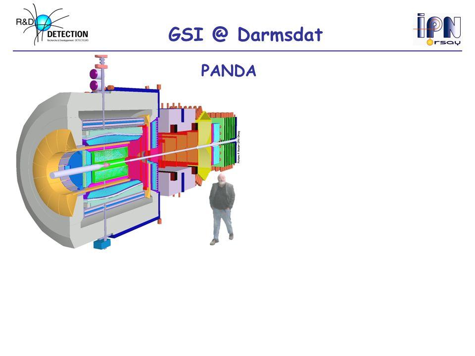 GSI @ Darmsdat PANDA