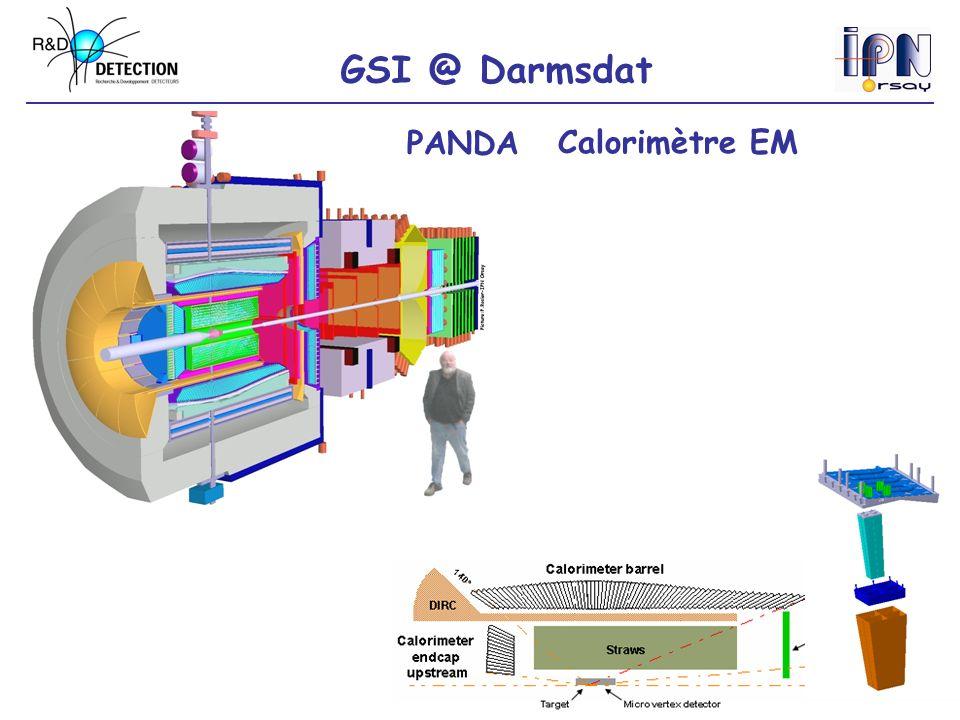 GSI @ Darmsdat PANDACalorimètre EM