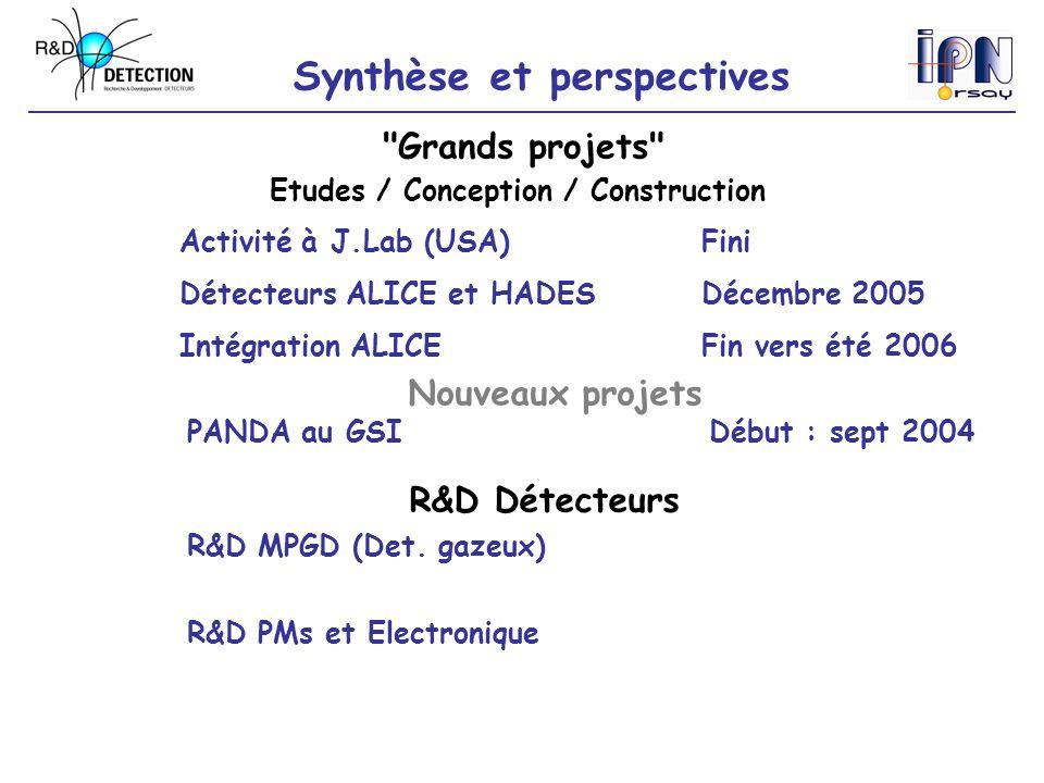 Synthèse et perspectives R&D MPGD (Det.