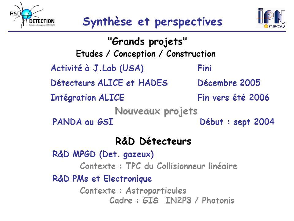 Synthèse et perspectives R&D MPGD (Det. gazeux) R&D PMs et Electronique