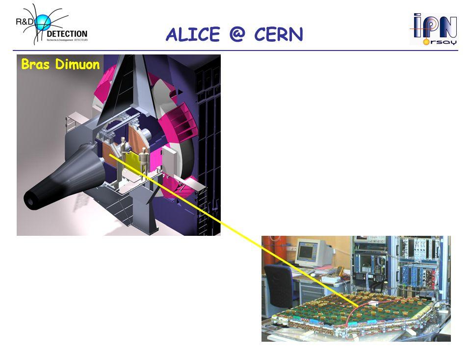 ALICE @ CERN Bras Dimuon