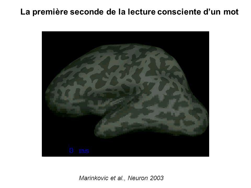 La première seconde de la lecture consciente dun mot Marinkovic et al., Neuron 2003