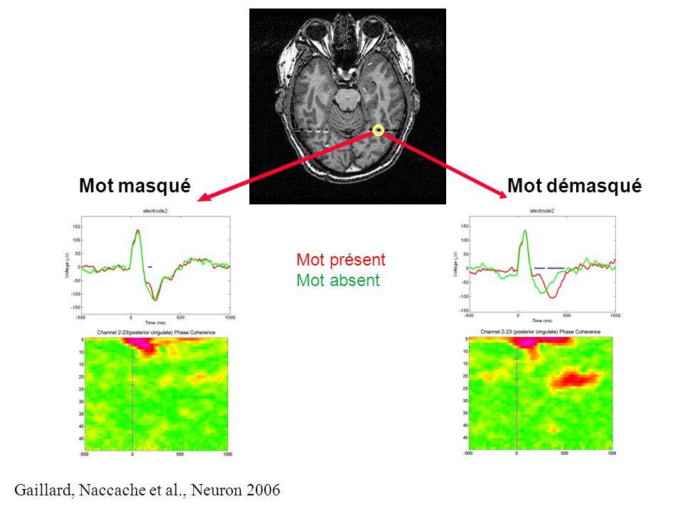 Mot démasquéMot masqué Mot présent Mot absent Gaillard, Naccache et al., Neuron 2006