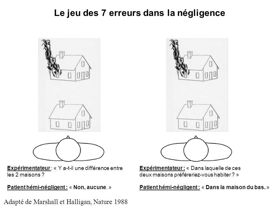 Le jeu des 7 erreurs dans la négligence Expérimentateur : « Y a-t-il une différence entre les 2 maisons ? Patient hémi-négligent : « Non, aucune. » Ex