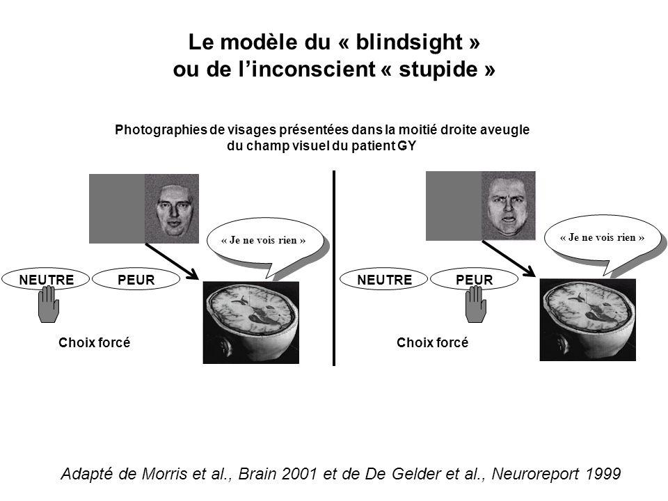 Le modèle du « blindsight » ou de linconscient « stupide » Photographies de visages présentées dans la moitié droite aveugle du champ visuel du patien
