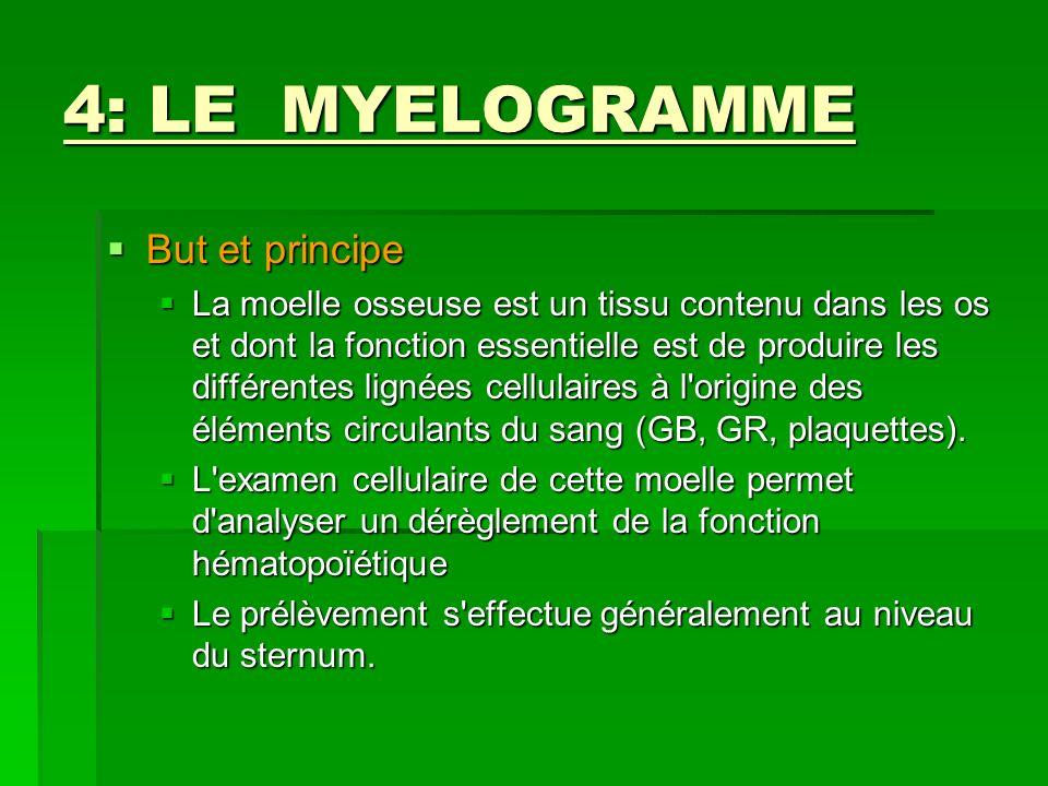 4: LE MYELOGRAMME But et principe But et principe La moelle osseuse est un tissu contenu dans les os et dont la fonction essentielle est de produire l