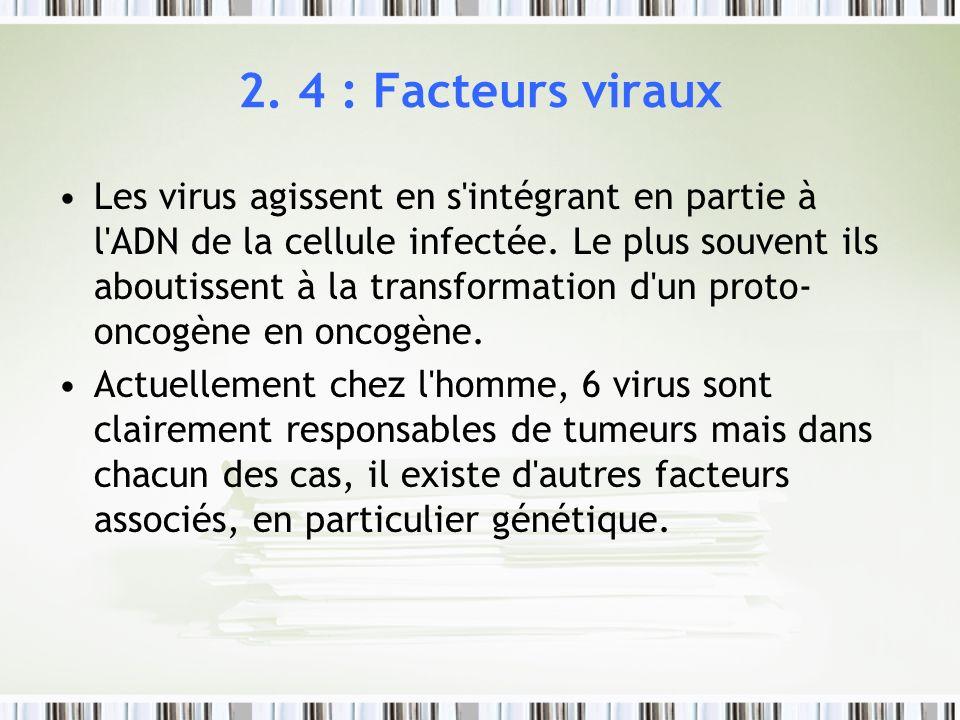 2. 4 : Facteurs viraux Les virus agissent en s'intégrant en partie à l'ADN de la cellule infectée. Le plus souvent ils aboutissent à la transformation