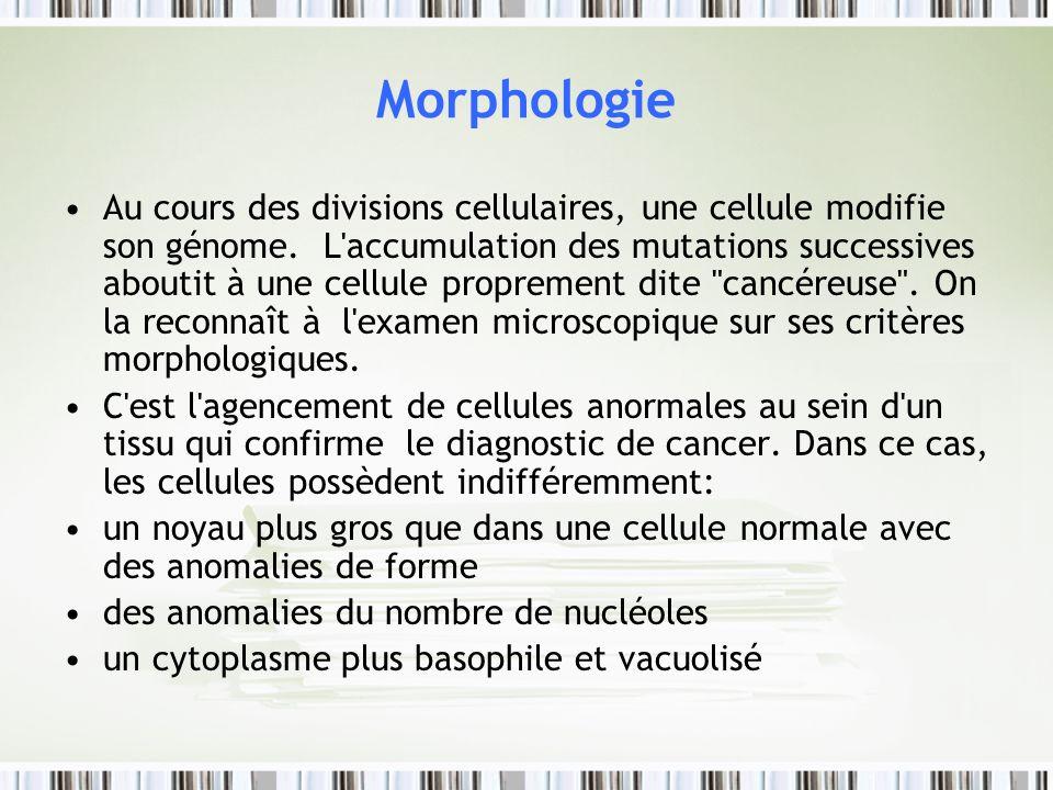 Morphologie Au cours des divisions cellulaires, une cellule modifie son génome. L'accumulation des mutations successives aboutit à une cellule proprem