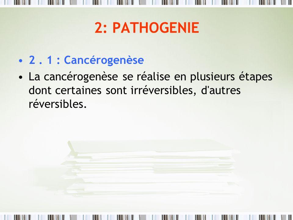 2: PATHOGENIE 2. 1 : Cancérogenèse La cancérogenèse se réalise en plusieurs étapes dont certaines sont irréversibles, d'autres réversibles.