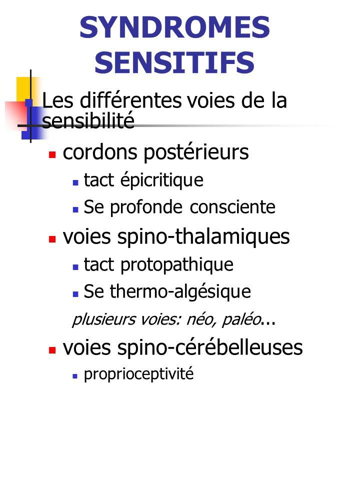 SYNDROMES SENSITIFS Système lemniscalSystème spino-thalamique Gyrus post- central