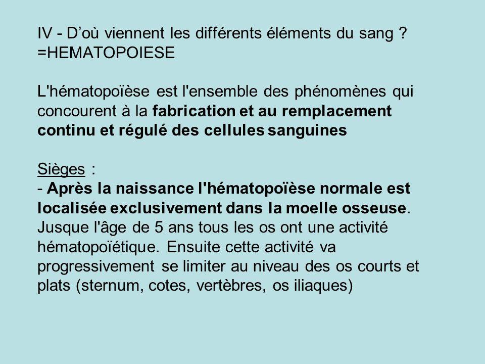 IV - Doù viennent les différents éléments du sang ? =HEMATOPOIESE L'hématopoïèse est l'ensemble des phénomènes qui concourent à la fabrication et au r