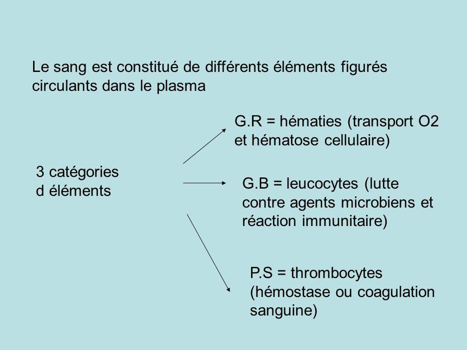 Le sang est constitué de différents éléments figurés circulants dans le plasma G.R = hématies (transport O2 et hématose cellulaire) G.B = leucocytes (