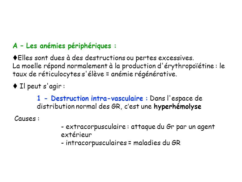 A – Les anémies périphériques : Elles sont dues à des destructions ou pertes excessives. La moelle répond normalement à la production d'érythropoïétin
