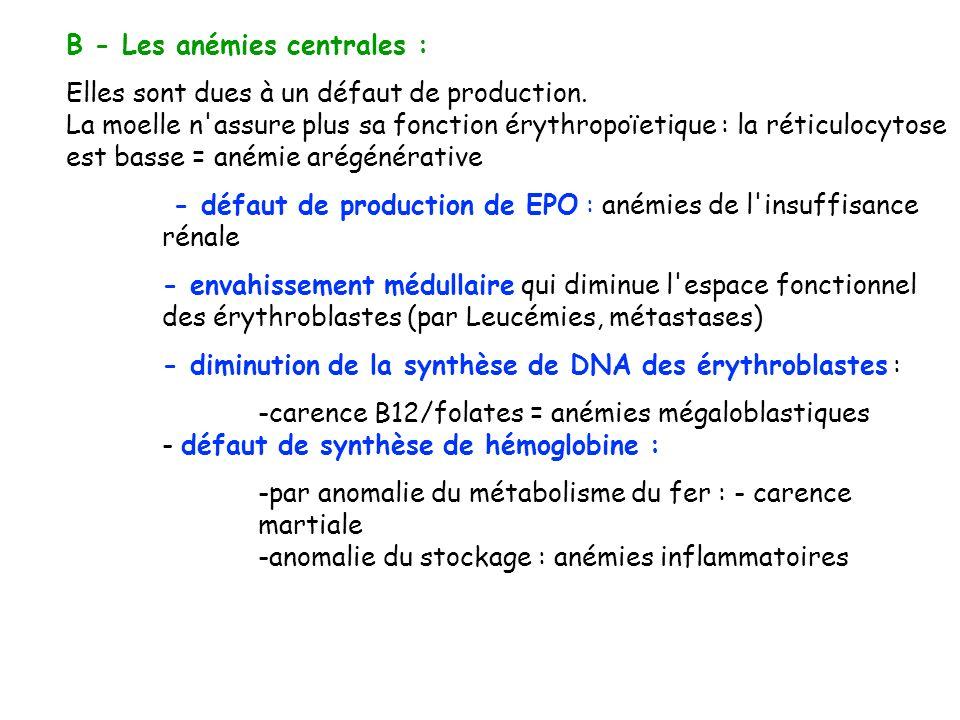 B - Les anémies centrales : Elles sont dues à un défaut de production. La moelle n'assure plus sa fonction érythropoïetique : la réticulocytose est ba