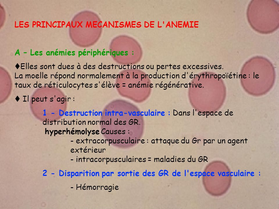 LES PRINCIPAUX MECANISMES DE L'ANEMIE A – Les anémies périphériques : Elles sont dues à des destructions ou pertes excessives. La moelle répond normal