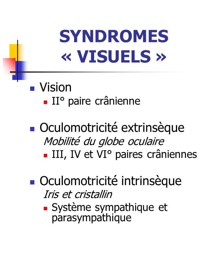 SYNDROMES « VISUELS » Vision II° paire crânienne Oculomotricité extrinsèque Mobilité du globe oculaire III, IV et VI° paires crâniennes Oculomotricité