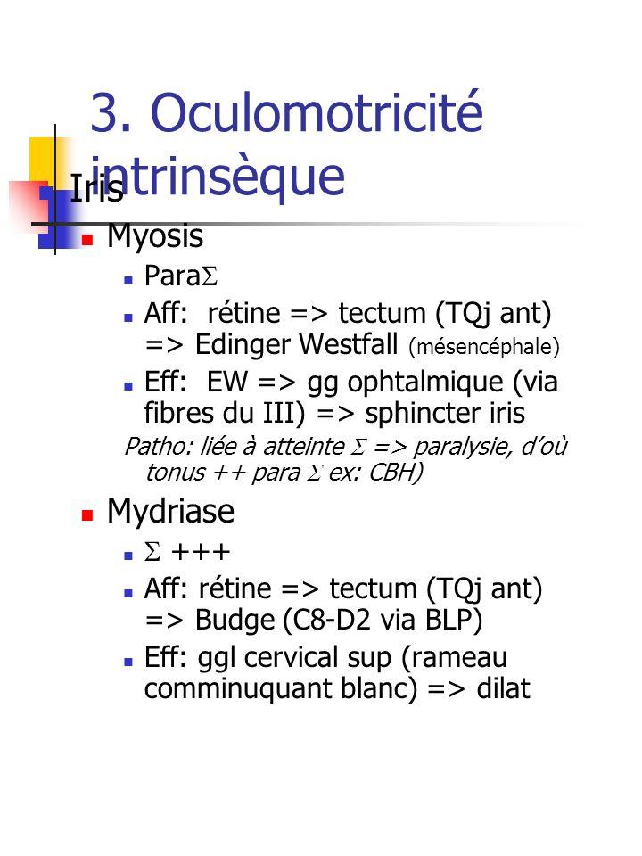 3. Oculomotricité intrinsèque Iris Myosis Para Aff: rétine => tectum (TQj ant) => Edinger Westfall (mésencéphale) Eff: EW => gg ophtalmique (via fibre