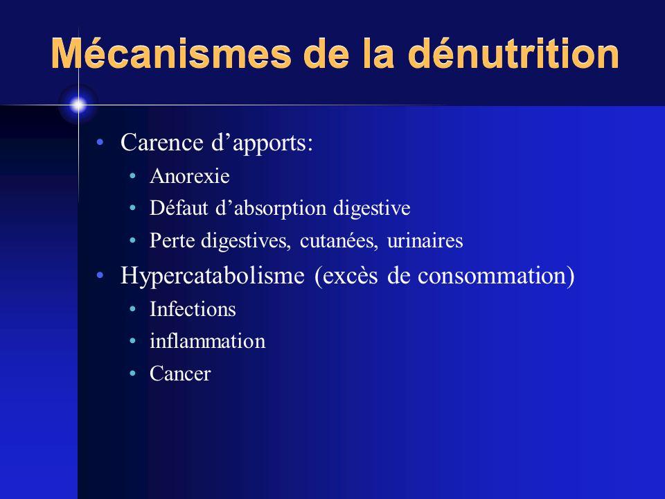 Mécanismes de la dénutrition Carence dapports: Anorexie Défaut dabsorption digestive Perte digestives, cutanées, urinaires Hypercatabolisme (excès de