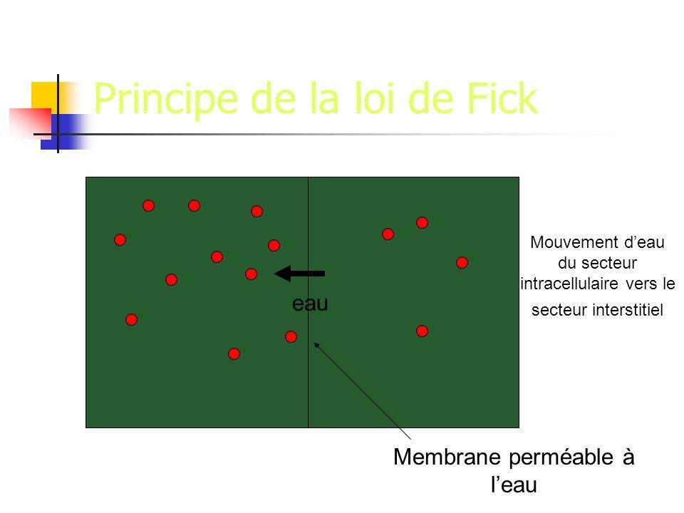 Principe de la loi de Fick eau Membrane perméable à leau Mouvement deau du secteur intracellulaire vers le secteur interstitiel