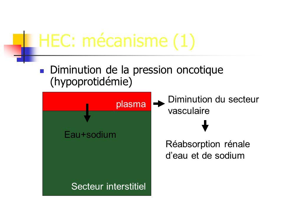 HEC: mécanisme (1) Diminution de la pression oncotique (hypoprotidémie) Eau+sodium plasma Secteur interstitiel Diminution du secteur vasculaire Réabsorption rénale deau et de sodium