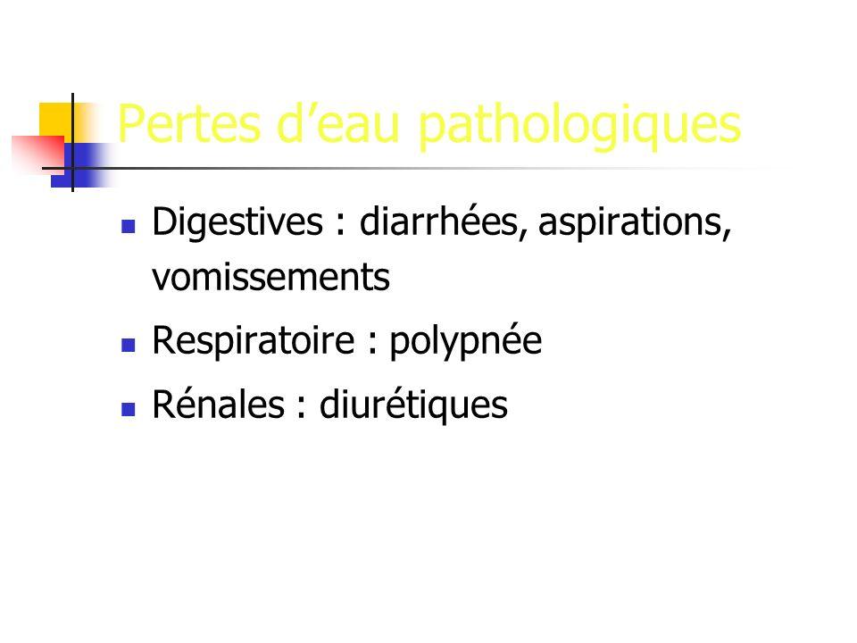 Pertes deau pathologiques Digestives : diarrhées, aspirations, vomissements Respiratoire : polypnée Rénales : diurétiques