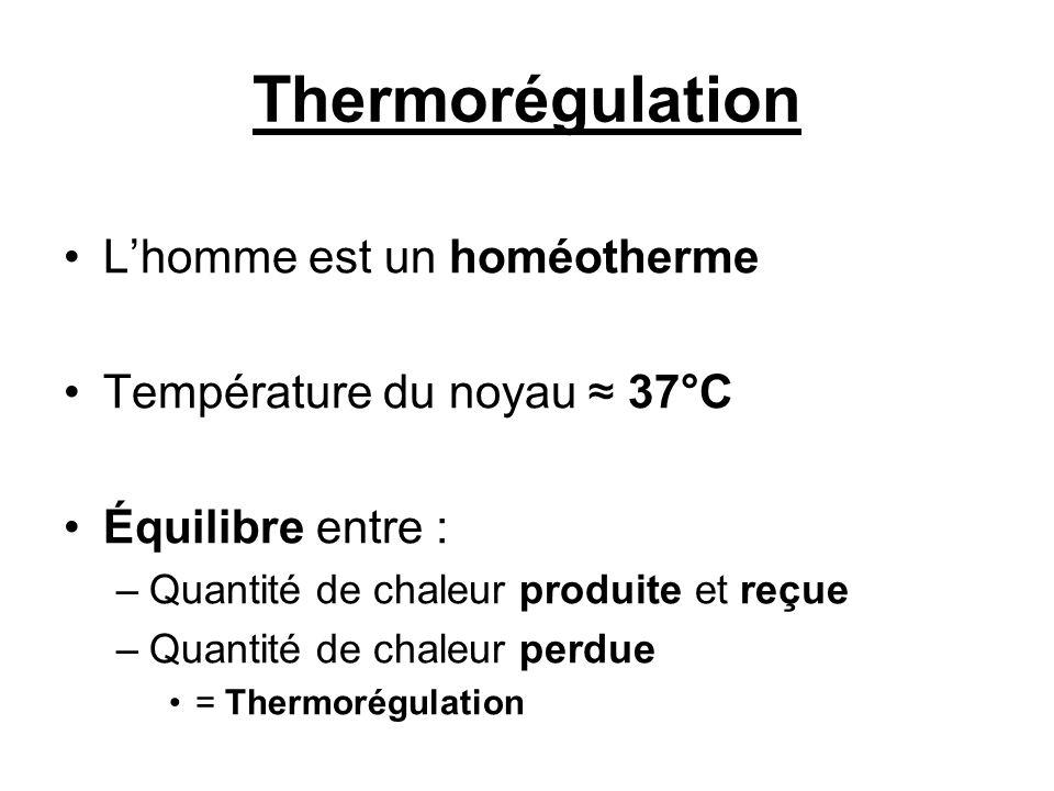 Thermorégulation Lhomme est un homéotherme Température du noyau 37°C Équilibre entre : –Quantité de chaleur produite et reçue –Quantité de chaleur per