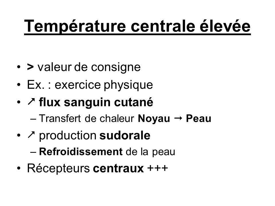 Température centrale élevée > valeur de consigne Ex. : exercice physique flux sanguin cutané –Transfert de chaleur Noyau Peau production sudorale –Ref