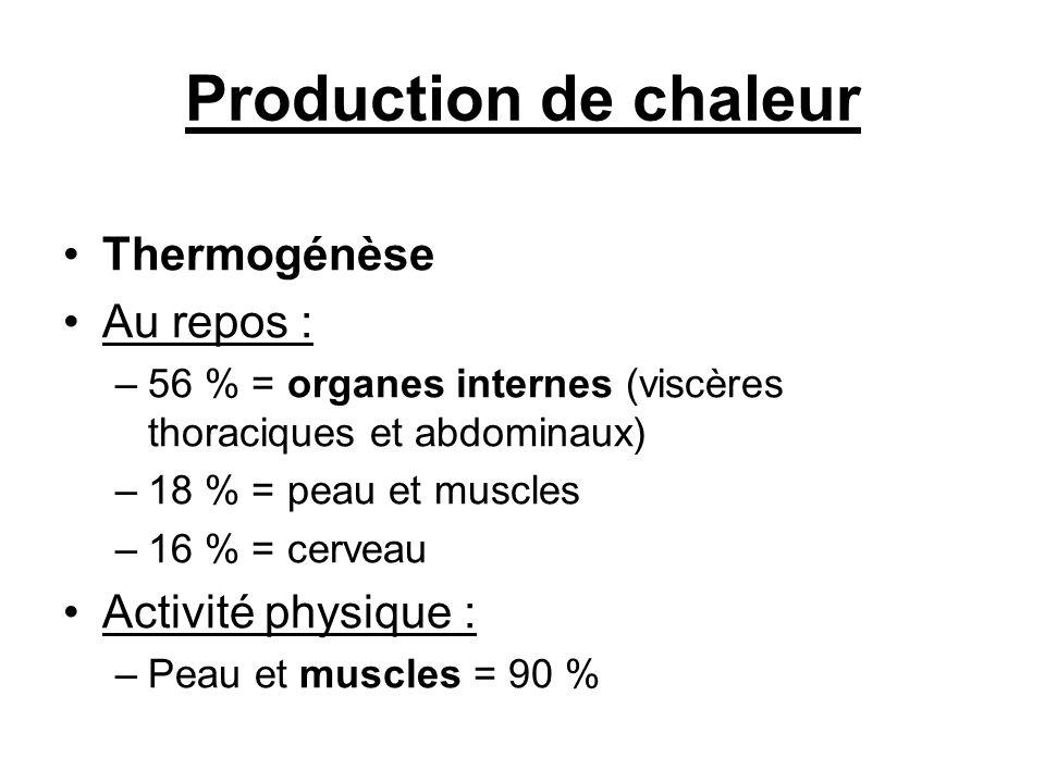 Production de chaleur Thermogénèse Au repos : –56 % = organes internes (viscères thoraciques et abdominaux) –18 % = peau et muscles –16 % = cerveau Ac