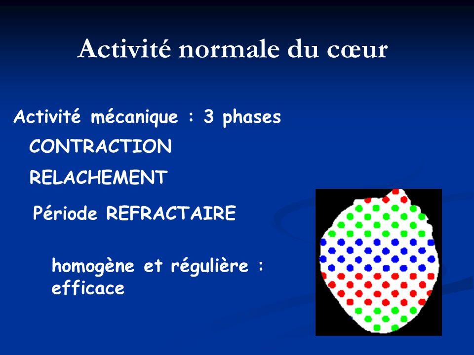 Activité mécanique : 3 phases CONTRACTION RELACHEMENT Période REFRACTAIRE homogène et régulière : efficace Activité normale du cœur