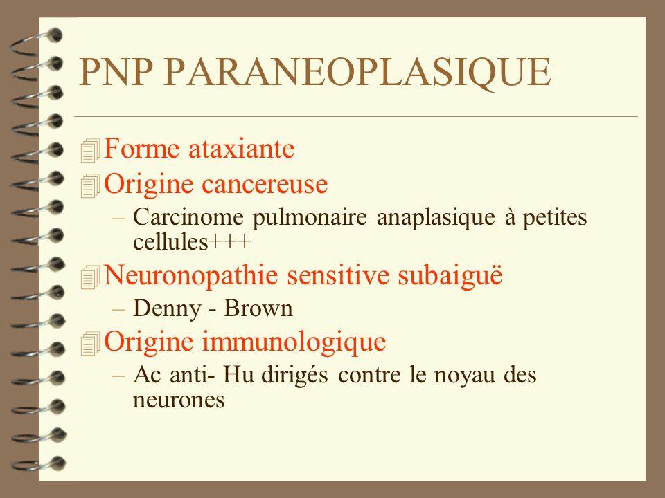 PNP PARANEOPLASIQUE 4 Forme ataxiante 4 Origine cancereuse –Carcinome pulmonaire anaplasique à petites cellules+++ 4 Neuronopathie sensitive subaiguë