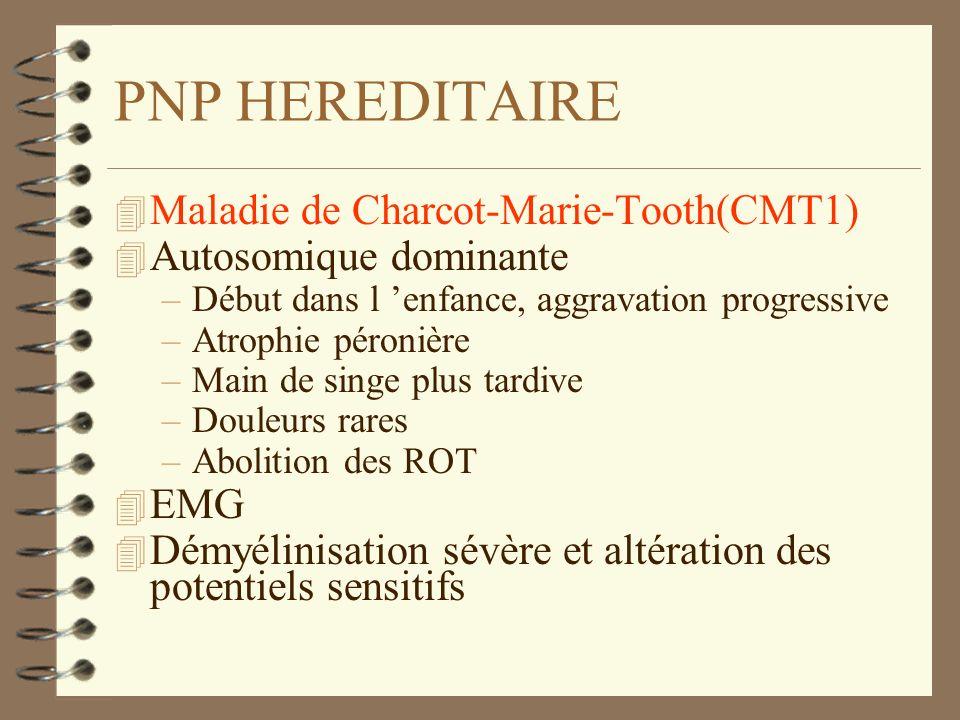 PNP HEREDITAIRE 4 Maladie de Charcot-Marie-Tooth(CMT1) 4 Autosomique dominante –Début dans l enfance, aggravation progressive –Atrophie péronière –Mai