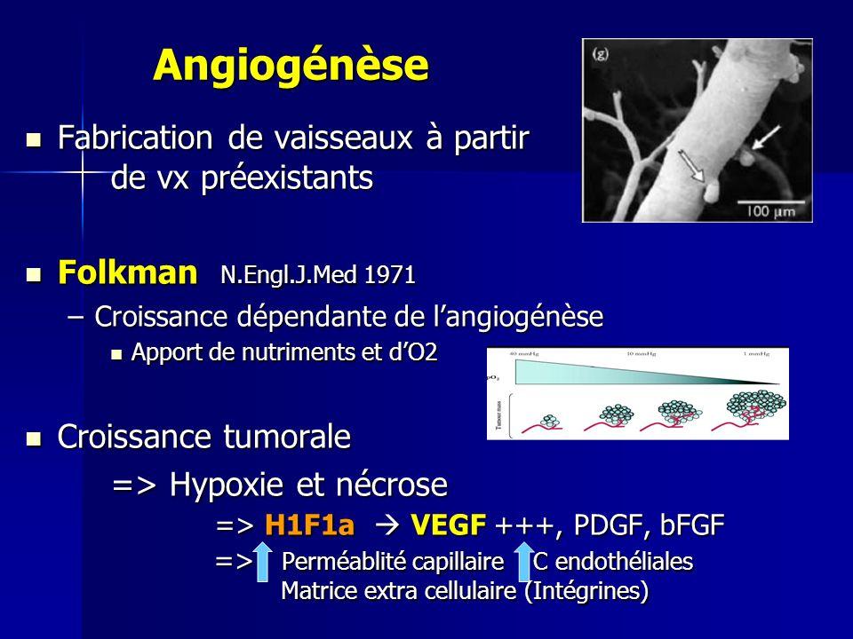 Angiogénèse Fabrication de vaisseaux à partir de vx préexistants Fabrication de vaisseaux à partir de vx préexistants Folkman N.Engl.J.Med 1971 Folkma
