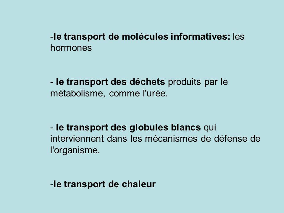 -le transport de molécules informatives: les hormones - le transport des déchets produits par le métabolisme, comme l'urée. - le transport des globule