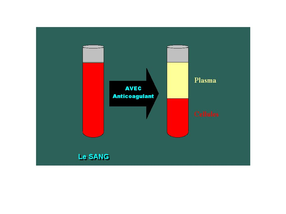 Ce pourcentage correspond au rapport entre le volume qu occupent des érythrocytes après centrifugation d un prélévement sanguin veineux et le volume centrifugé HEMATOCRITE