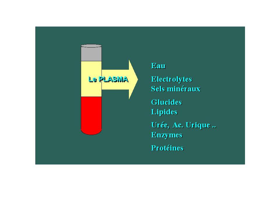 3 à 10 ansFemmeHomme Hématies (millions /mm 3 )3.5- 5.04.0 - 5.34.2 - 5.7 Hémoglobine (g /100 ml)12.0 - 14.512.5 - 15.514.0 - 17.0 Hématocrite (%)36 - 4537 - 4640 - 52 VGM (µ 3 )74 - 9180 - 95 TCMH (pg)24 - 3028 - 32 CCMH (%)28 - 3330 - 35 Leucocytes(/mm 3x1000 )4500 - 130004000 - 10000 Plaquettes (/mm 3x1000 )150 - 400