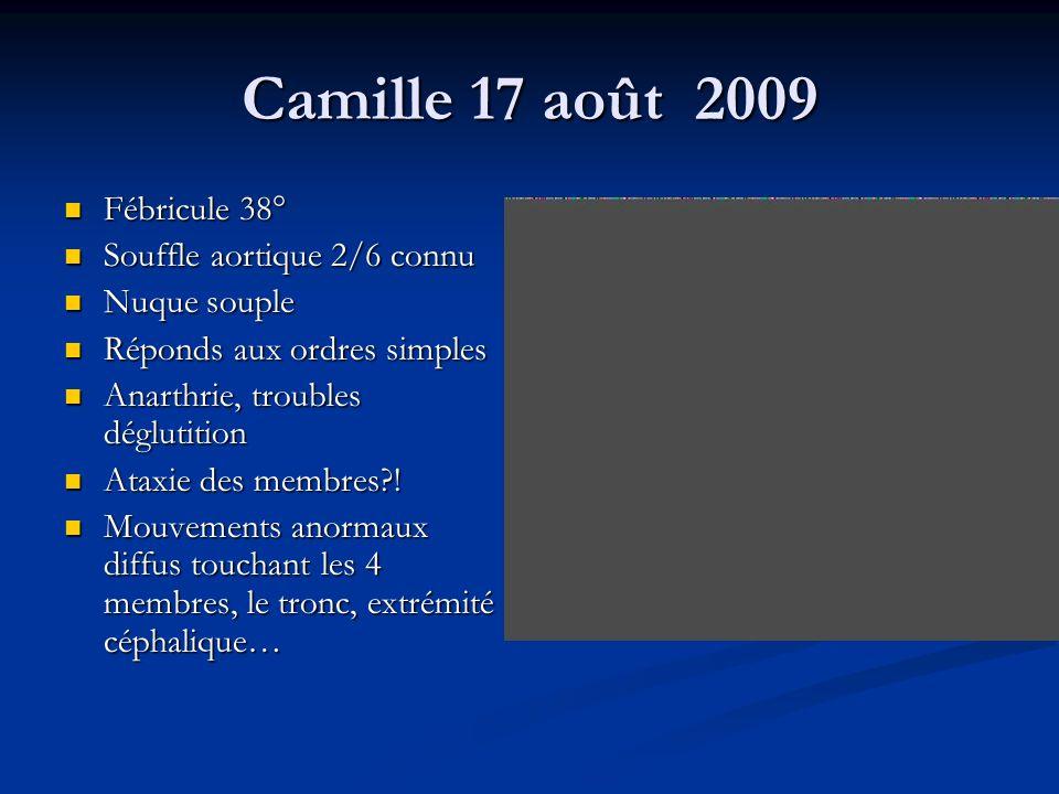 Camille 17 août 2009 Fébricule 38° Fébricule 38° Souffle aortique 2/6 connu Souffle aortique 2/6 connu Nuque souple Nuque souple Réponds aux ordres si