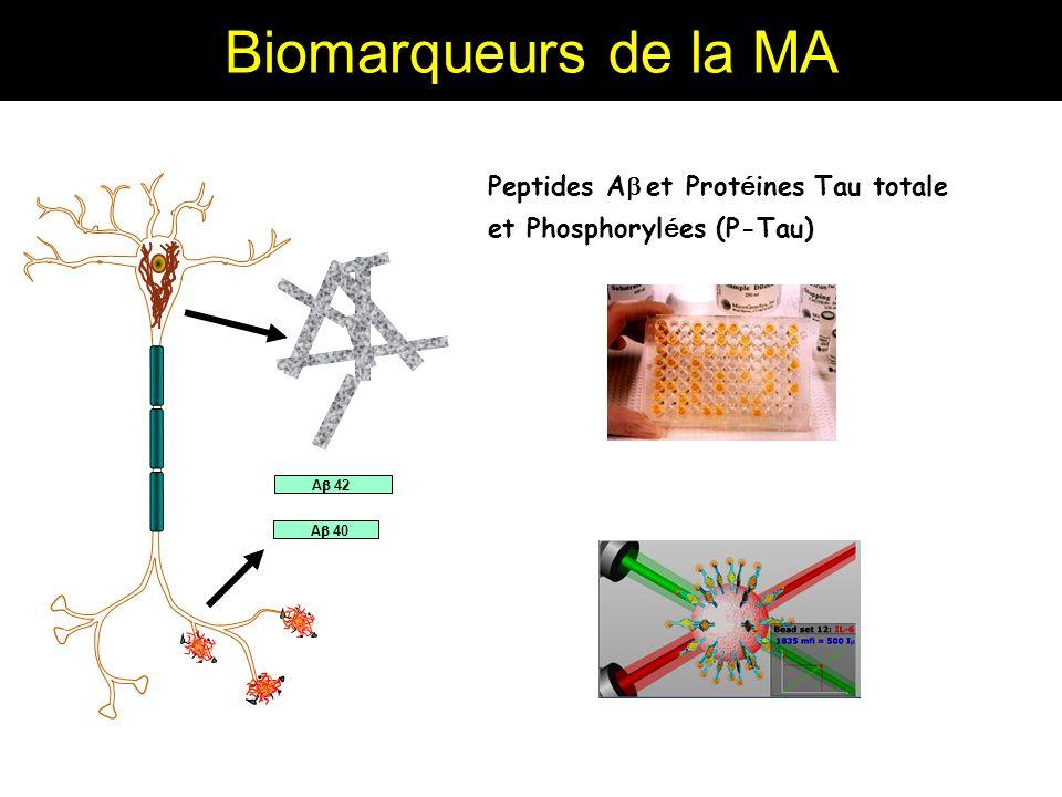 Biomarqueurs de la MA Peptides A et Prot é ines Tau totale et Phosphoryl é es (P-Tau) A 42 A 40