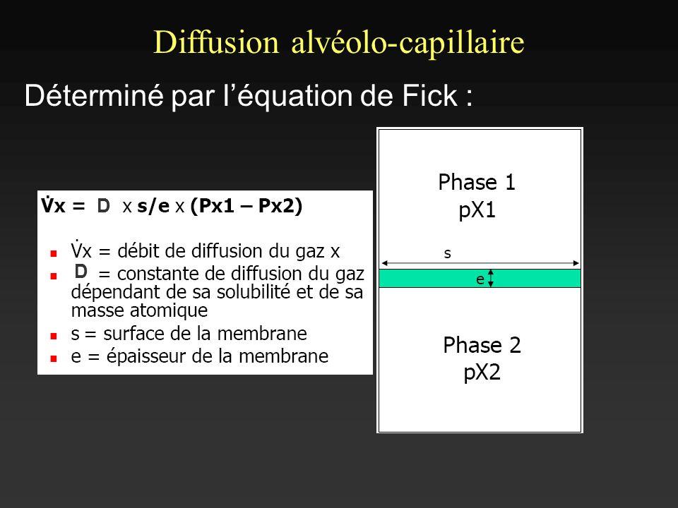 Déterminé par léquation de Fick : Diffusion alvéolo-capillaire D D