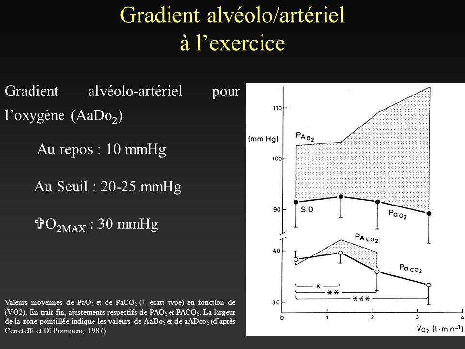 Gradient alvéolo/artériel à lexercice Gradient alvéolo-artériel pour loxygène (AaDo 2 ) Au repos : 10 mmHg Au Seuil : 20-25 mmHg V O 2MAX : 30 mmHg Va