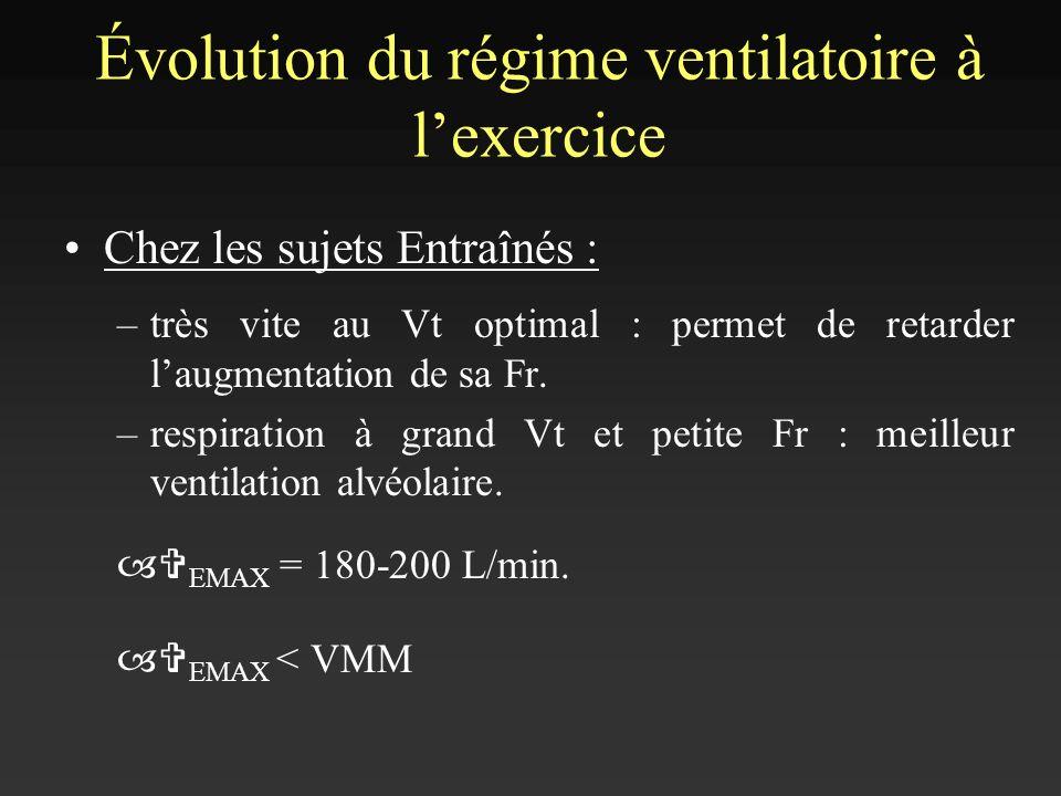 Chez les sujets Entraînés : –très vite au Vt optimal : permet de retarder laugmentation de sa Fr. –respiration à grand Vt et petite Fr : meilleur vent