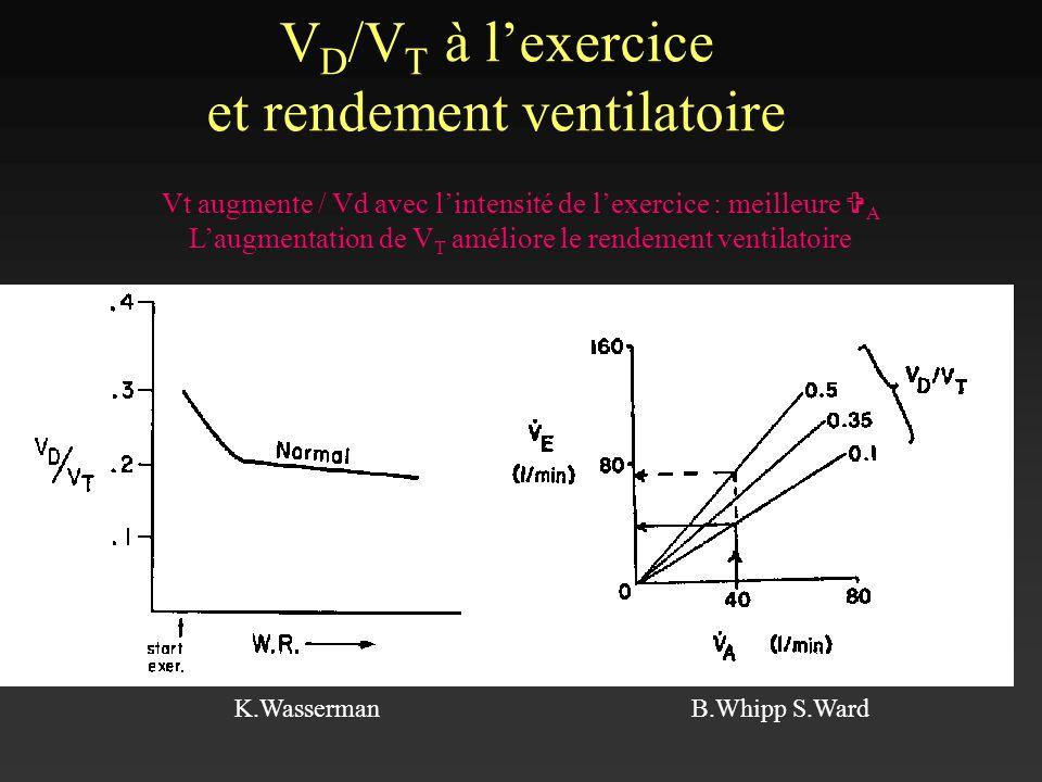 V D /V T à lexercice et rendement ventilatoire K.WassermanB.Whipp S.Ward Vt augmente / Vd avec lintensité de lexercice : meilleure V A Laugmentation d