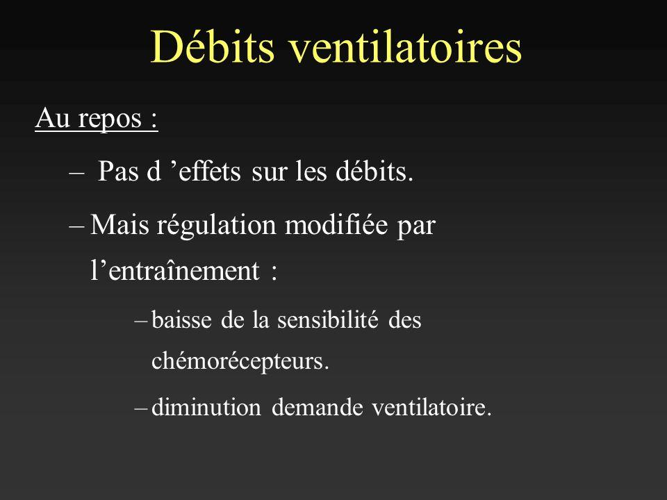 Débits ventilatoires Au repos : – Pas d effets sur les débits. –Mais régulation modifiée par lentraînement : –baisse de la sensibilité des chémorécept