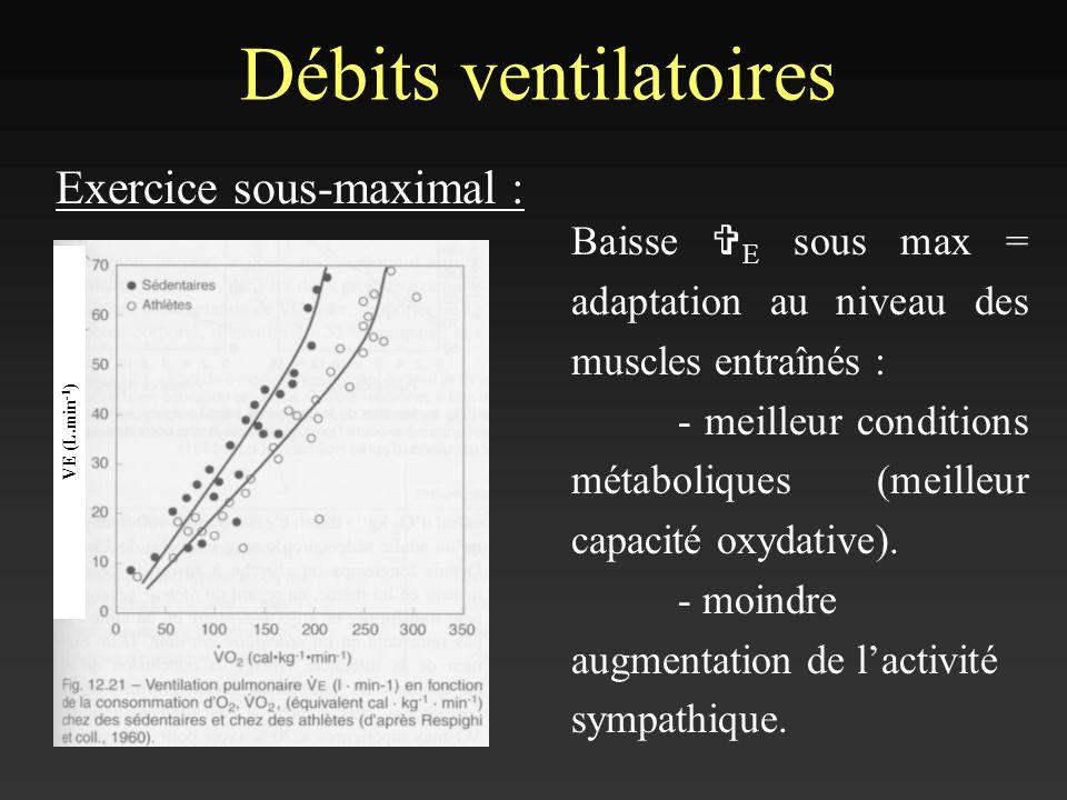 Débits ventilatoires Exercice sous-maximal : VE (L.min -1 ) Baisse V E sous max = adaptation au niveau des muscles entraînés : - meilleur conditions m