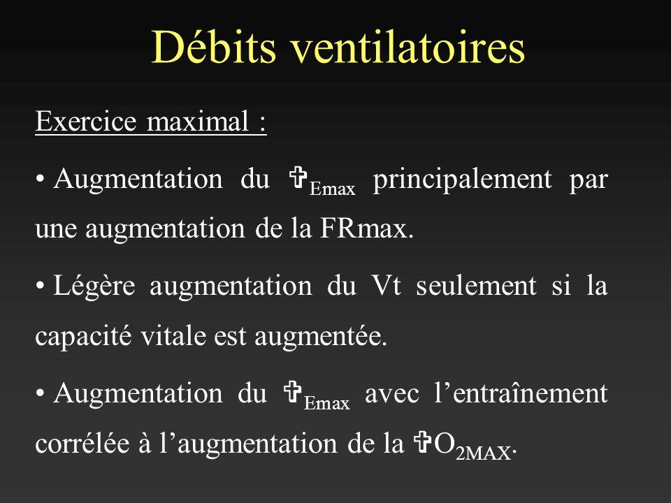 Débits ventilatoires Exercice maximal : Augmentation du V Emax principalement par une augmentation de la FRmax. Légère augmentation du Vt seulement si