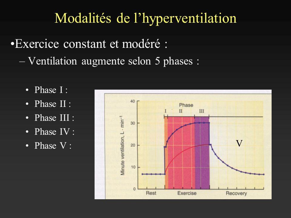 Modalités de lhyperventilation Exercice constant et modéré : – Ventilation augmente selon 5 phases : Phase I : Phase II : Phase III : Phase IV : Phase