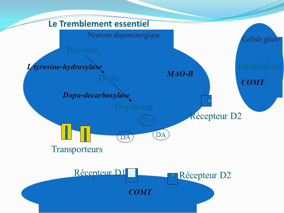 Le Tremblement essentiel Cellule gliale Tyrosine Dopa Dopamine Dopa-decarboxylase L tyrosine-hydroxylase COMT Récepteur D2 Récepteur D1 Transporteurs