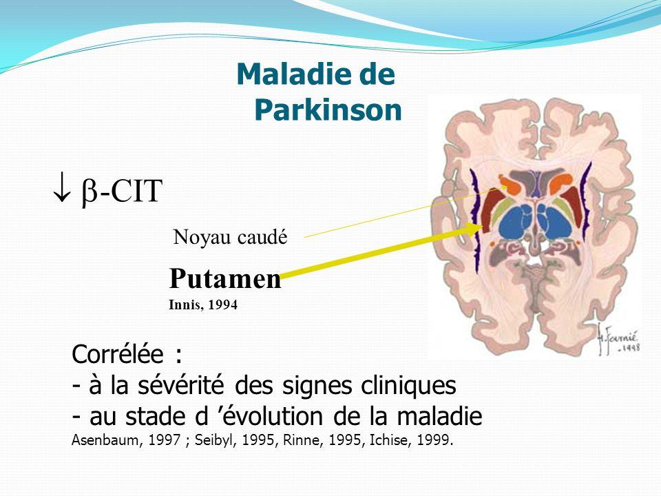 Maladie de Parkinson -CIT Noyau caudé Putamen Innis, 1994 Corrélée : - à la sévérité des signes cliniques - au stade d évolution de la maladie Asenbau